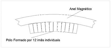 Figura 6 - Formação do polo